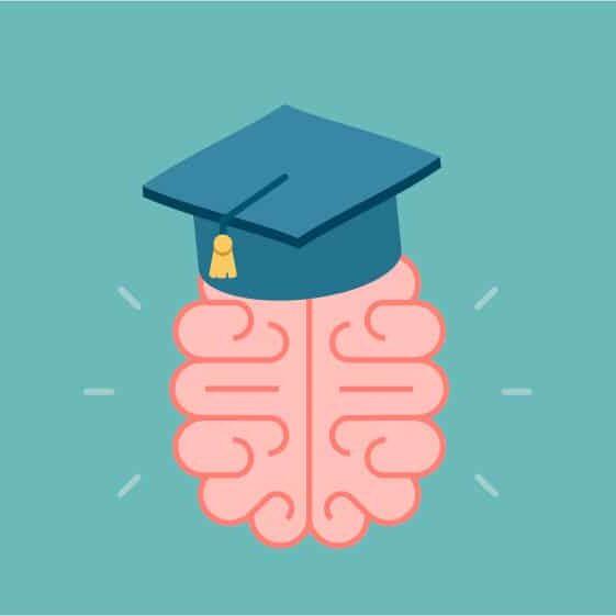 diagrams_training brain